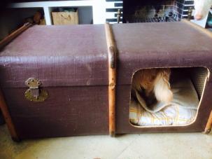 ein kompletter Koffer, der sowohl als Kuschelhöhle