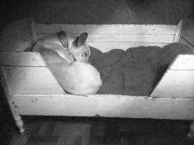 Im großen Doppelzimmer erfreut sich das schöne alte Babybett